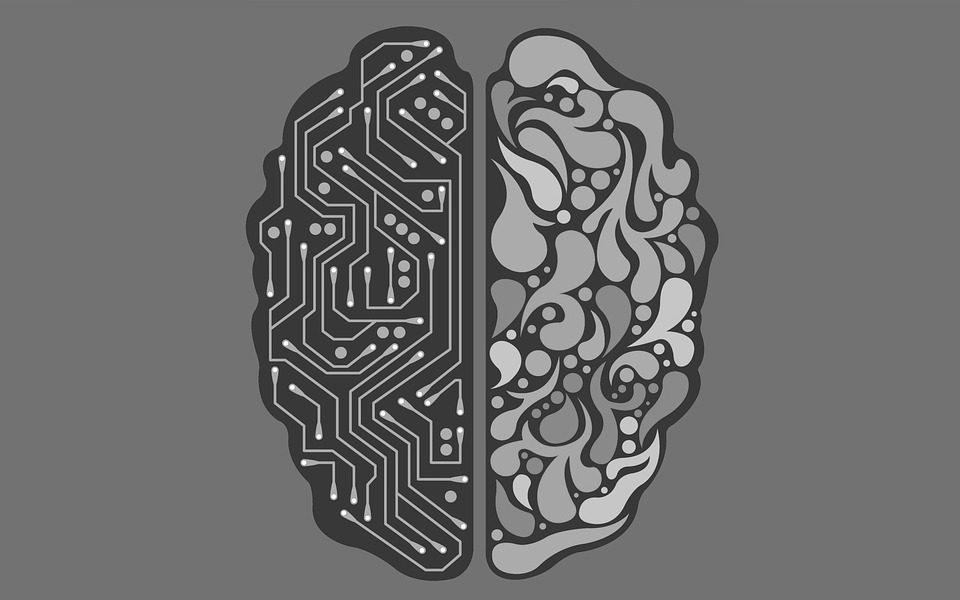 Artificial Intelligence versus Natural Intelligence